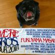 福山雅治  WE'RE BROS.TOUR 2018@宮城セキスイハイムスーパーアリーナ