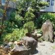 涼風のお庭(^^♪