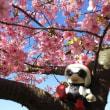 桜~♪ とキロボミニ
