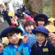 おれんじ 5歳児 菜の花・種蒔き