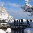 冬の兼六園 ⑤