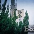 【bozzo.jp】浮島の森