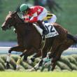 東京TC 2歳牝馬 レッドベレーザ 特別戦上回る好時計で新馬勝ち なんと新馬勝ち6頭目