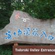 江口ともみが世田谷区・等々力を散歩【朝の!さんぽ道】
