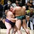 「大奄美、快進撃も控えめ=大相撲春場所」とのニュースっす。