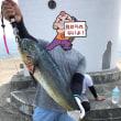8月8日薩摩川内(沖堤防)