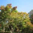 10/18(水)のイキメンニュース~追分&軽井沢周辺の情報