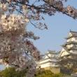 こころの祭り 姫路 <播州しの笛  体験>