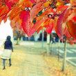 善光寺界隈・秋色散歩