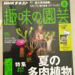 NHKテキスト『趣味の園芸』テキスト8月号!買ってくださいね🎵