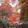 神峯山寺で紅葉狩り2017