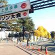 絵日記(11/23~12/9)