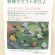 六甲山記念碑台で野鳥クラフト作り