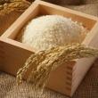 お米5㎏袋に23万粒