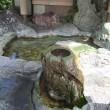 佐賀県ウォーキング協会の例会でいで湯の里 嬉野を歩く