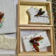 昆虫標本の作り方〜2018.08.20名和昆虫博物館〜