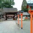 「二十二社巡り」平野神社・京都市は北部、衣笠山の東麓に