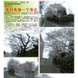 散策 「東京北西部-126」  高田馬場~下落合