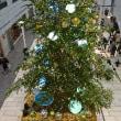 ラシック クリスマスツリー