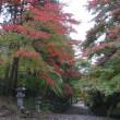 幸せな土地という意味の「多賀」。紅葉の名所「胡宮(このみや)神社」へ