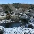 釜山も雪~!