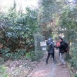 RKH 2019-04 最明寺史跡公園7と松田の河津桜