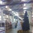 コストコ、もうクリスマス・・・
