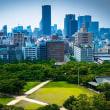 大阪でマグニチュード5.9の地震が発生 2人死亡 【動画・写真】