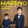 1/7 七五三撮影 弟くんと一緒に♫ 全データ+ミニフォトブック¥22000 札幌写真館ハレノヒ