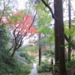 鎌倉を知る ーー 山崎方代と吉野秀雄 ーー