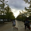 20171007~08  川の博物館  そば処あらかわ亭  わんにゃん屋敷  ミューズパーク  クラブ湯