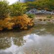 駒ヶ岳千畳敷