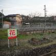 日田彦山線全駅下車の旅(その17)