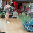 2017ー斐川神楽祭り