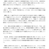 日本維新の会の内政干渉