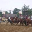 別のアトラクションもあり、馬こそ本当に活躍