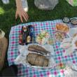 ピクニックと野点