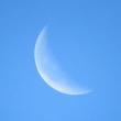 初秋の有明の月