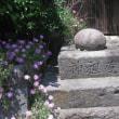 甲州街道を歩く-野田尻から犬目を経て大月まで その17