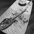 秋刀魚の骨