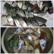 今週の釣果(ケンサキイカ、サバ)