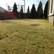 今年最後の芝刈り