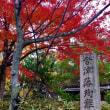 会津藩殉難者墓地の紅葉