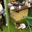 お盆 我が家の庭で妹中心にバーベキュー・・・・・・・桃ちゃん大喜び 。.:♪*:・'(*⌒―⌒*