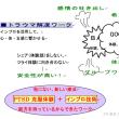 11月23日(祝)24日(土)「メンタルサポーター実践講座 ~ベーシック~」
