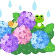 梅雨だからずっと雨が降っている!
