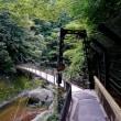 袋田の滝。吊り橋
