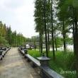 臨桂 桂林中央公園