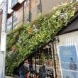 神戸まちなみ緑化大賞