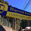 ココファーム収穫祭2017